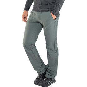Salomon Wayfarer Pants Men Regular urban chic